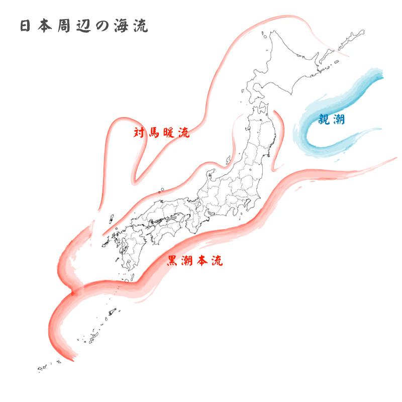 日本周辺の海流 : 自然たちよ